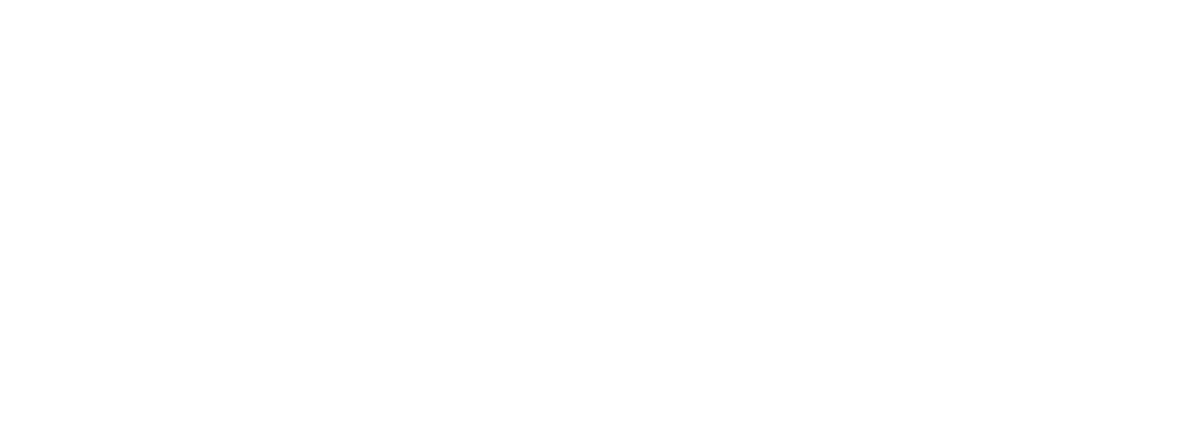GTP® GlobalTransferPricing Business Solutions